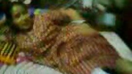 হাত দিয়ে সানি লিওন সেক্সি বিএফ বাঁধা এবং নৃশংসভাবে 10 ইঞ্চি বিবিসি বিনয়ের শাস্তি ব্যবহৃত! HD 720p