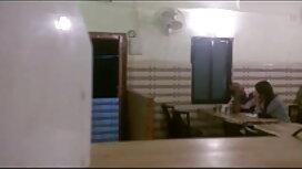 দেবদূত ওপেন সেক্সি বিএফ চিরশ্যামল ক্ষুদ্র বৃক্ষবিশেষ, যৌনসঙ্গম দাস এইচডি 720প