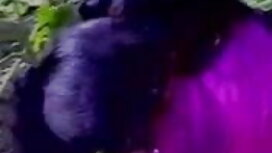 হটেস্ট অ্যাম্বার নেভাদা বিএফ সেক্সি বিএফ - প্রদর্শন এইচডি 720 এ